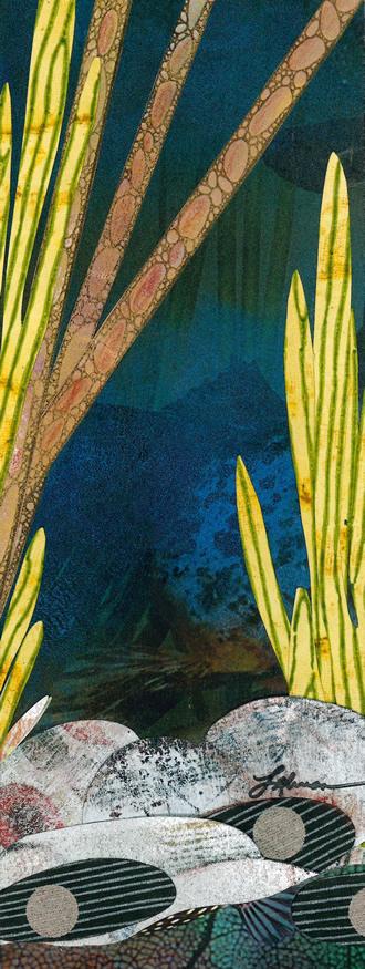 Submerged in Aruba